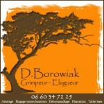 logo Didier Borowiak V2